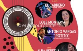 San Pedro del Pinatar 23rd Flamenco Fiesta 14th July 2018