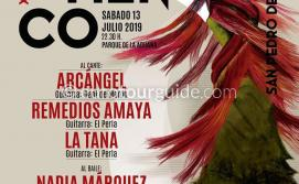 San Pedro del Pinatar 24th Flamenco Fiesta 13th July 2019