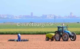 What to do in Mar de Cristal Mar Menor Costa Calida Murcia Spain, trying farming is one of many things to do and places to visit here.