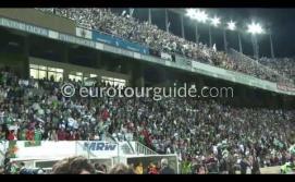 Resumen de la celebración del ascenso del Elche CF a la Primera División 2013