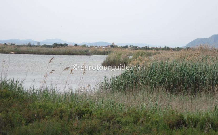 El Hondo RAMSAR wetlands conservation list