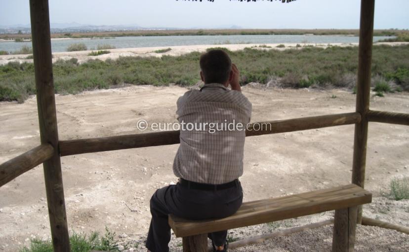 El Hondo Birdwatching Twittching