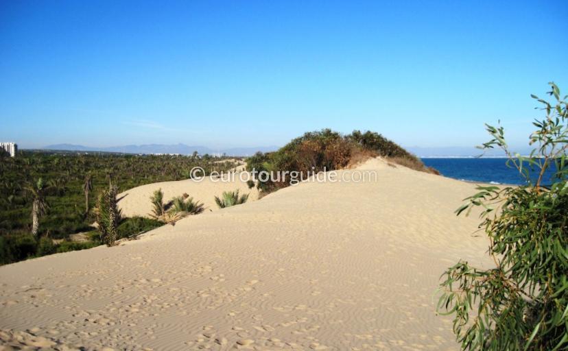 Guardamar del Segura Alfonso Natural Park