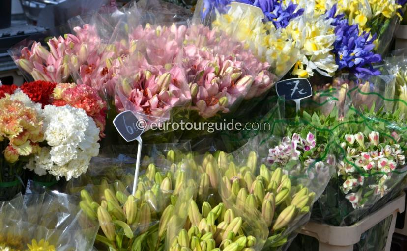 Whats on in  Pilar de Horadada, The town often holds plant markets for you to buy locally grown herbs, flowers and plants