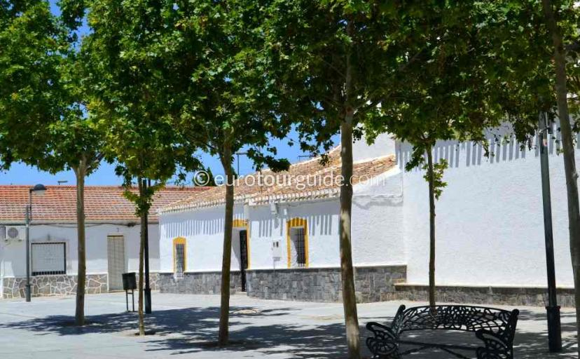 Things to do in San Cayetano Murcia Spain, Read a book under the shade of the trees one of many places to visit here