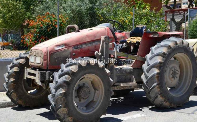 Top 10 things to do in and around Sucina Mar Menor Murcia Spain, Farming is one of many things to do and places to visit here