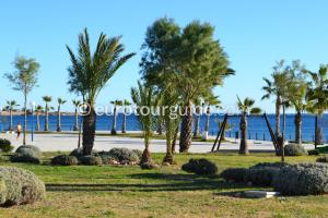 Images of Playa Flamenca Costa Blanca Spain, Eurotourguide has a lovely selection