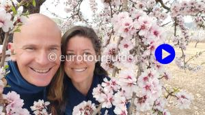 EuroTourGuide Coach Tours Positive Place Hondon Valley Almond Blossom