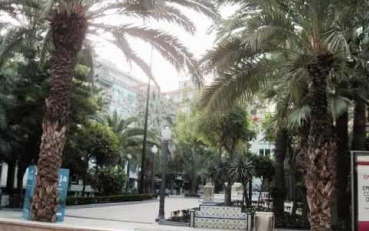 Elche City by www.eurotourguide.com