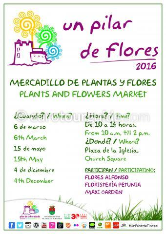 Pilar de la Horadada Flower and Plant Market 2016