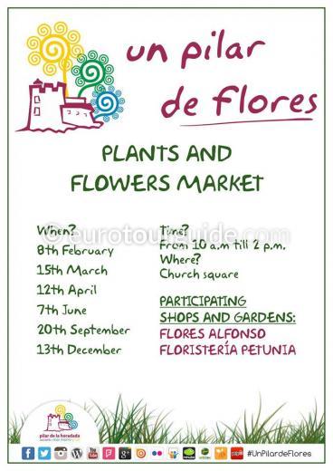 Pilar de la Horadada Flower and Plant Market 2015