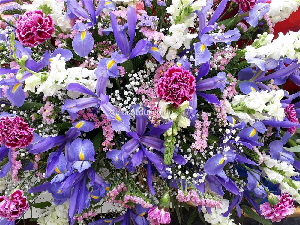 EuroTourGuide Coach Tour 16th April Murica Flower Parade