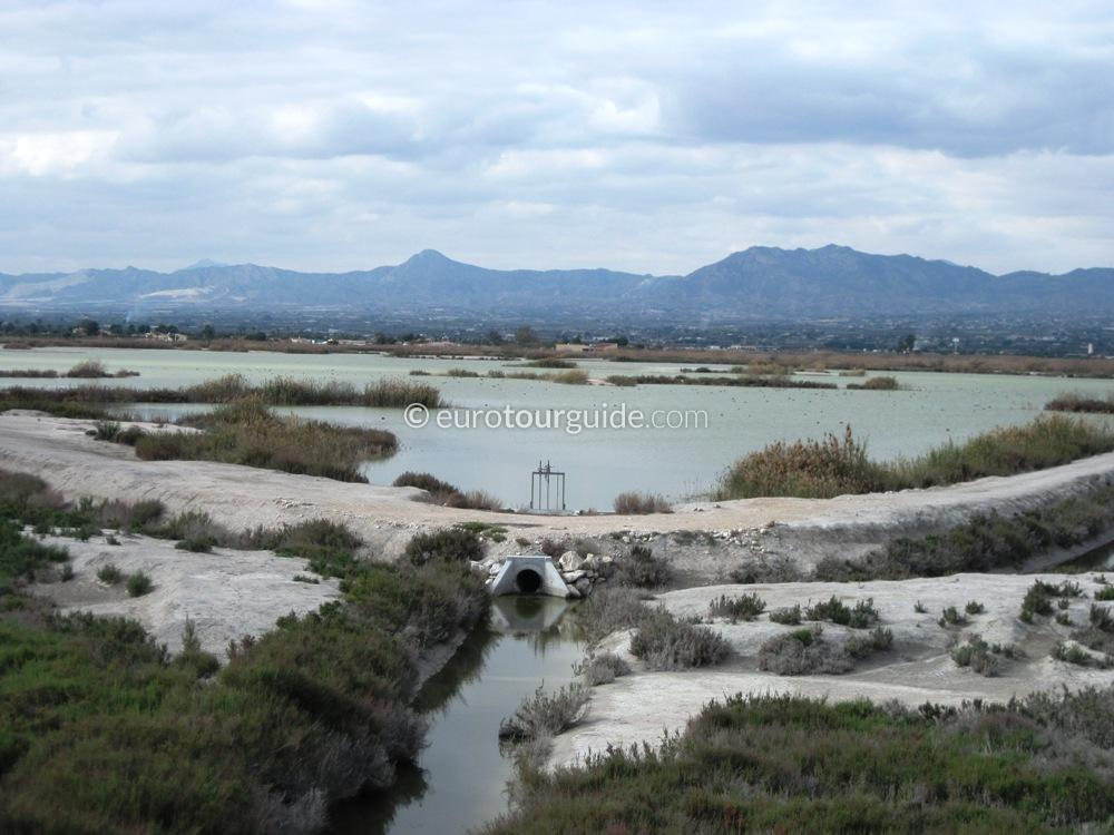EuroTourGuide Coach Tours El Hondo Nature Park