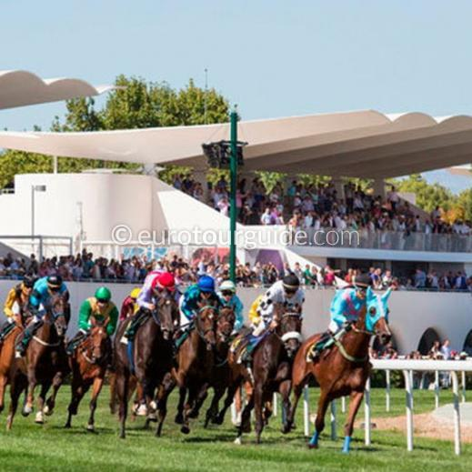 EuroTourGuide Coach Tour Horse Racing Madrid 9th-11th November 2019