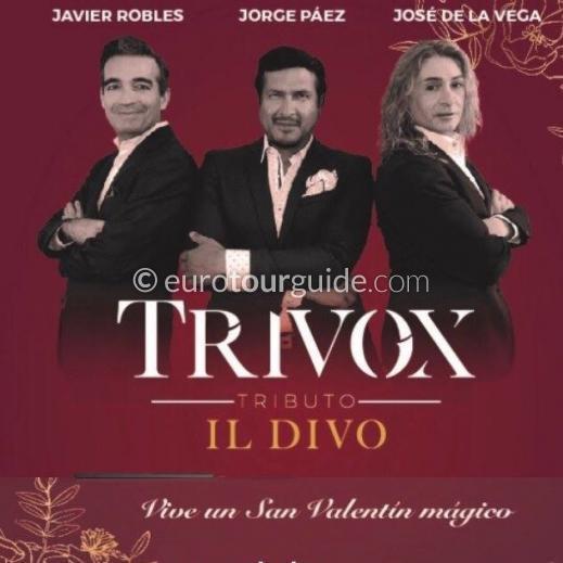 EuroTourGuide Coach Tour 14th February Il Divo Tribute Alicante